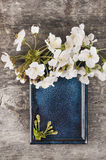 Blue ceramic tray with white cherry flowers Stock Image