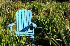 Blue chair royalty free stock photography