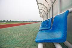 Blue chair in stadium Royalty Free Stock Images