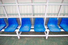 Blue chair in stadium Royalty Free Stock Image