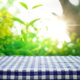Blue checkered tablecloth texture top view with abstract green garden. Blue checkered tablecloth texture top view with abstract green from garden background.For Stock Photography