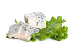Blue cheese. On white background stock images