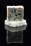 Blue cheese on a black background Royalty Free Stock Photos
