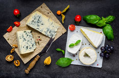 Blue Cheese and Brie Soft Cheese Royalty Free Stock Image