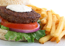 Blue cheese burger with french fries Stock Images