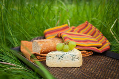 Blue cheese with grapes and baguette on tray Royalty Free Stock Photos