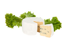 Blue cheese with lettuce Stock Photo