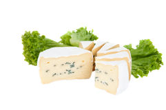 Blue cheese with lettuce Stock Photography
