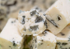 Blue cheese macro Royalty Free Stock Image