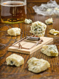 Blue Cheese with Mousetrap. Chunks of blue cheese with mousetrap royalty free stock images