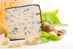 Blue cheese. With nuts and basil Stock Image