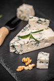 Blue cheese with nuts Stock Images