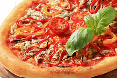 Blue cheese pizza with strips of pepper on top Royalty Free Stock Photography