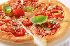 Blue cheese pizza with strips of pepper on top Royalty Free Stock Image