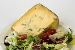 Blue cheese and salad Stock Photography