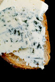 Blue cheese sandwich Royalty Free Stock Photos