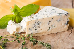 Blue cheese. With thyme and basil Royalty Free Stock Photography