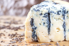 Blue cheese on wood board Stock Images
