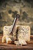 Blue cheese on wood royalty free stock photos