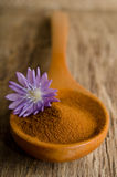 Blue chicory flower and spoon of powder instant chicory Stock Photography