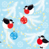Blue Christmas background with fir branches and birds Royalty Free Stock Images