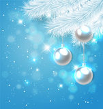 Blue Christmas background with fir Stock Photography