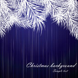 Blue Christmas background with fur-tree branches. Vector illustartion Royalty Free Stock Photography