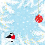 Blue Christmas background with snowflakes. Fir branches, bullfinch and Christmas ball, vector illustration Royalty Free Stock Images