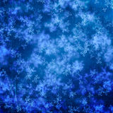 Blue christmas background. With christmas trees Stock Images