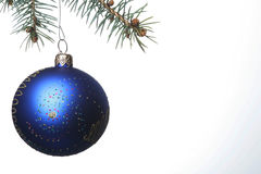 Blue Christmas Ball. Hangs from pine tree Stock Photography