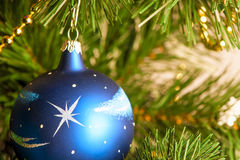 Blue Christmas ball on a branch Royalty Free Stock Photo