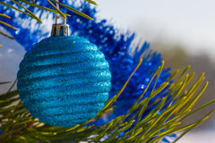 Blue christmas ball on a fir tree Royalty Free Stock Photography