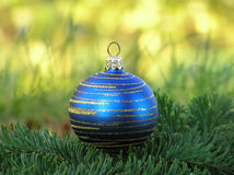 Blue christmas ball with golden swirls in green grass Royalty Free Stock Photos