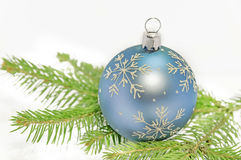 Blue christmas ball on green pine tree on white background Royalty Free Stock Image