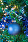 Blue Christmas ball hanging in tree Royalty Free Stock Images