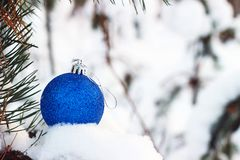 Blue christmas ball on snow on pine tree Royalty Free Stock Images