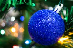 Blue christmas ball on a spruce branch. New year Royalty Free Stock Photo