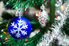 Blue christmas ball on a spruce branch. New year Stock Photos