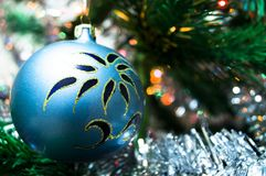 Blue christmas ball on a spruce branch. New year Stock Photography