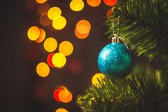 Blue Christmas ball on the spruce Christmas tree with multicolor stock photos