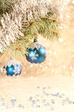 Blue christmas balls on a branch of a blue spruce Stock Photos