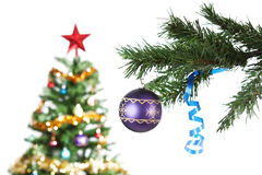 Blue Christmas bowl on the tree. Royalty Free Stock Images