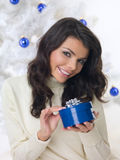 Blue Christmas Chick Royalty Free Stock Images