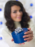 Blue Christmas Chick Royalty Free Stock Image