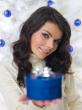 Blue Christmas Chick Royalty Free Stock Photos