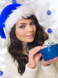 Blue Christmas Chick Royalty Free Stock Photo