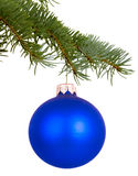Blue Christmas toy on a branch Royalty Free Stock Image