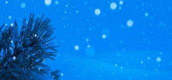Blue Christmas tree. Art christmas winter background; snowy landscape Stock Photos