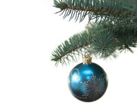 Blue christmas tree ball on fir brach