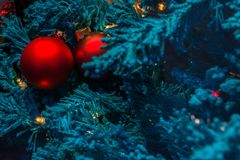 Blue Christmas tree with red decoration.  Royalty Free Stock Image